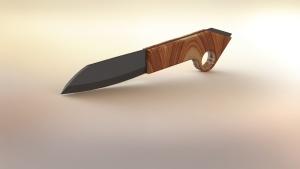 Knife survival