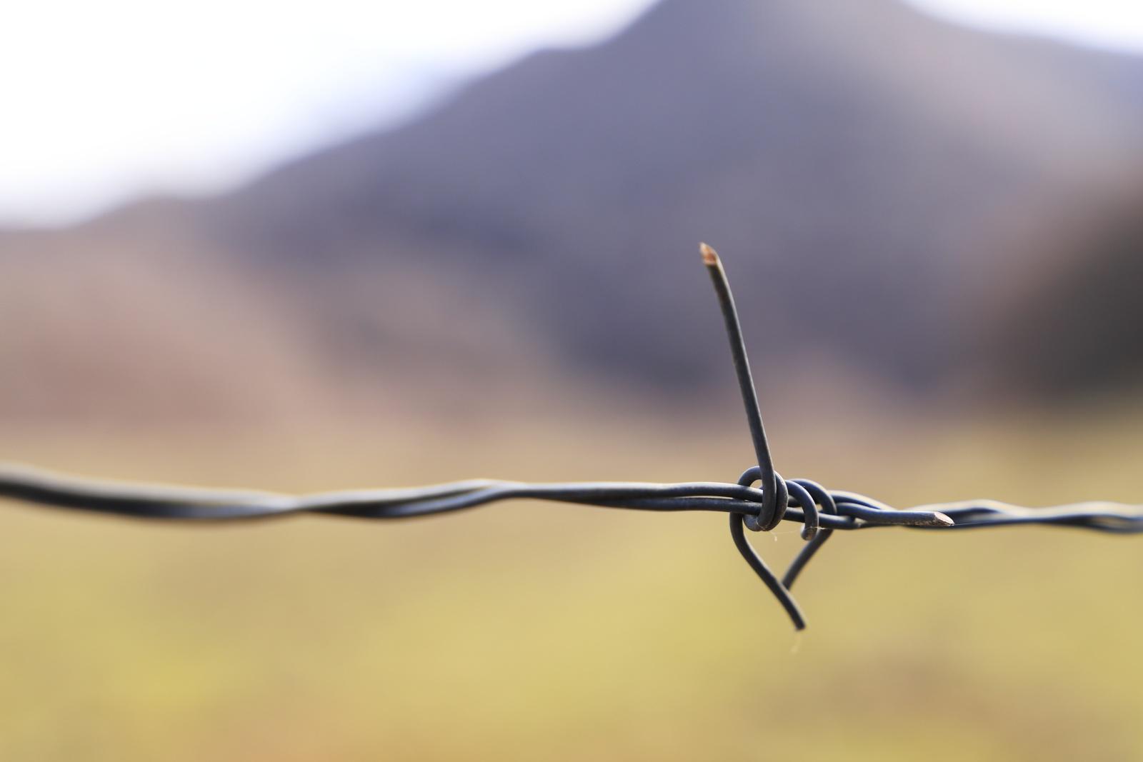 """Filo-Spinato - Prova dell'effetto Bokeh su filo spinato, mentre percorrevo un sentiero nel Parco Nazionale d'Abruzzo Lazio e Molise """"PNALM""""."""